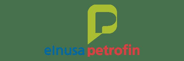 PT. ELNUSA PETROFIN